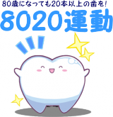 8020undou